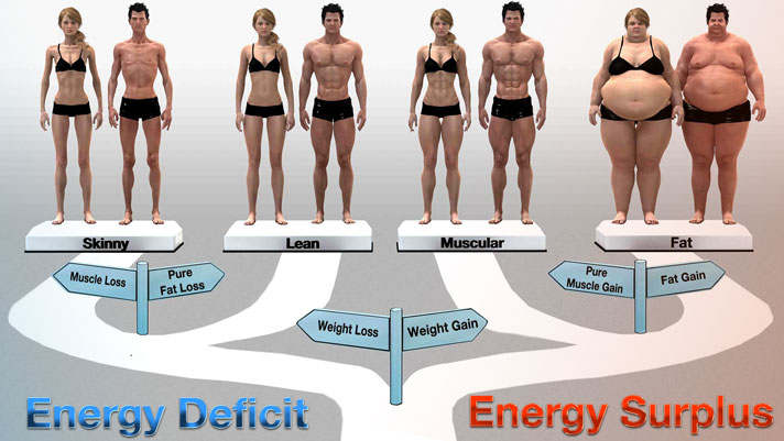 How to Regulate Body Weight?