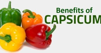 What are the Benefits of Capsicum?