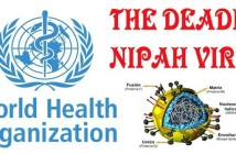 Prevent from Nipah Virus