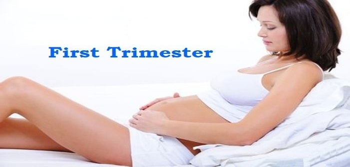 Physical Changes in First Trimester of Pregnancy
