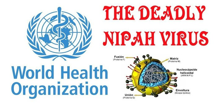 How to Prevent from Nipah Virus?